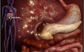Поджелудочная железа болит: какие лекарства принимать до осмотра врача