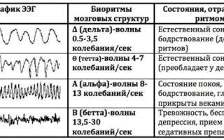 Ээг головного мозга — что это такое, что показывает электроэнцефалограмма?