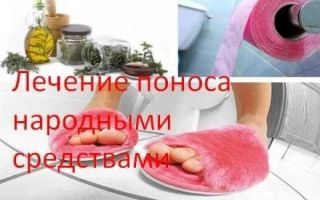 Народные средства от поноса у взрослых: лечение, что делать