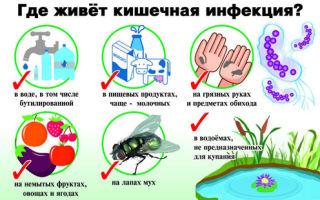 Кишечная инфекция — симптомы и лечение у взрослых: что принимать из препаратов