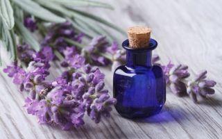 При насморке болит лоб и бровь — причины и лечение 2020
