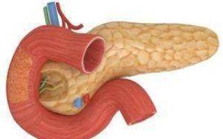 Как распознать заболевания поджелудочной железы – симптомы
