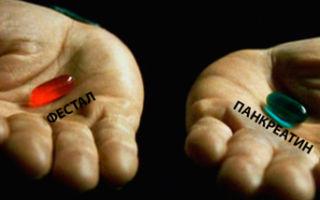 Фестал и панкреатин: что лучше и в чем разница (отличие составов, отзывы врачей)