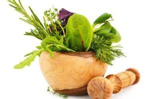 Рецепты для лечения аллергии травами — народные средства от аллергии