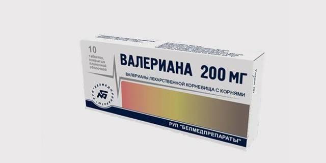 Валериана лекарственная - как принимать при различных недугах?