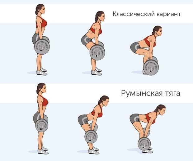Почему болит трапециевидная мышца (трапеция): причины, лечение, растяжки и упражнения, методы домашнего ухода