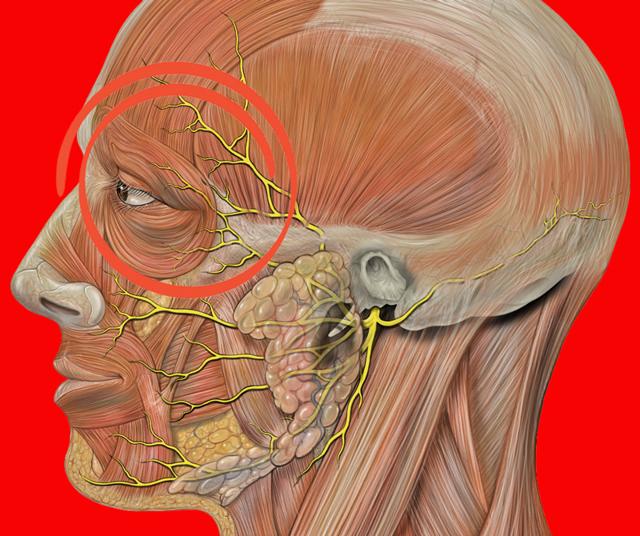 Болит голова в области лба и давит на глаза: причины, диагностика, лечение