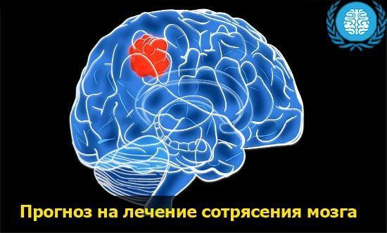 Как получить сотрясение мозга в домашних условиях: пособие для всех