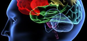 Атрофические изменения головного мозга – что это такое, причины