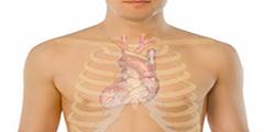 Синкопальное состояние у человека - классификация, причины проявления, профилактика и лечение