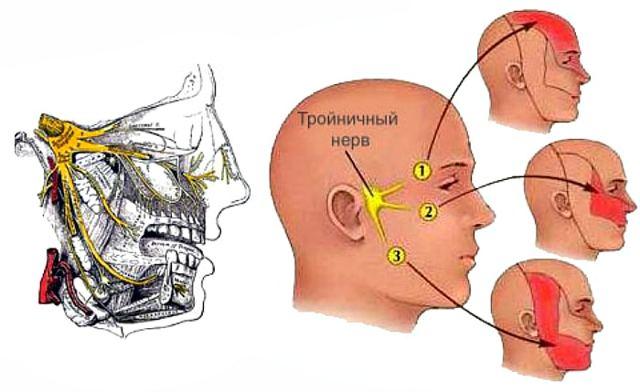 Болит ухо зуб и отдает в висок и глаз