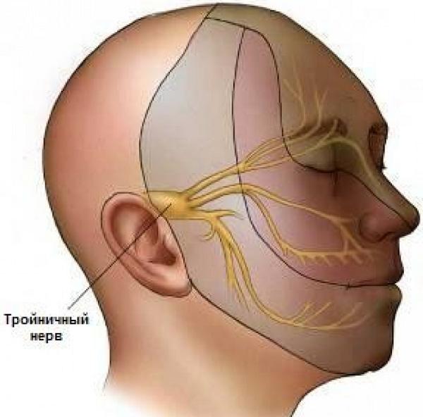 Болит левый висок головы - причины и лечение