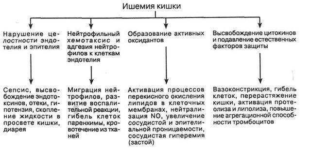 Ишемия кишечника википедия