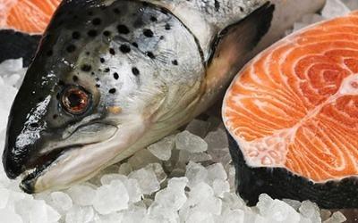 Рыба при гастрите: можно ли есть, влияние на желудок