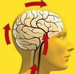 Дисциркуляторная энцефалопатия 3 степени: виды, признаки
