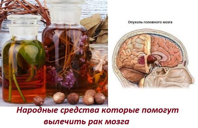 Фитотерапия при опухолях головного мозга - народная медицина