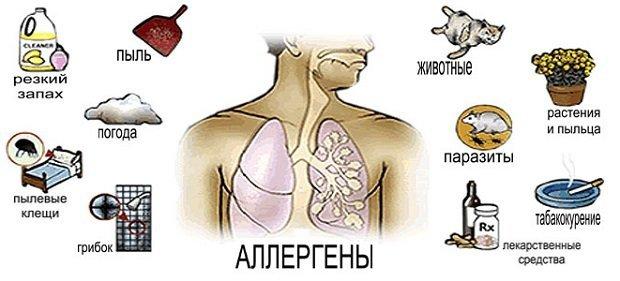 Аллергия на коже - красные пятна чешутся, лечение (фото)