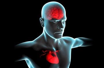 Магнезия при остеохондрозе - что это, для чего, побочные эффекты: общая информация о процедуре , особенности капельного введения смесей, отзывы