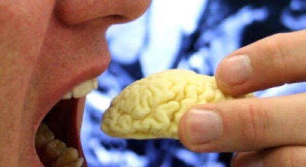 Сосуды головного мозга: симптомы и лечение, народные средства, как почистить?