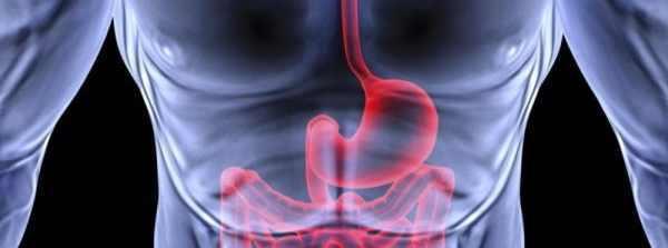 Что делать если болит желудок — когда лечить в домашних условиях
