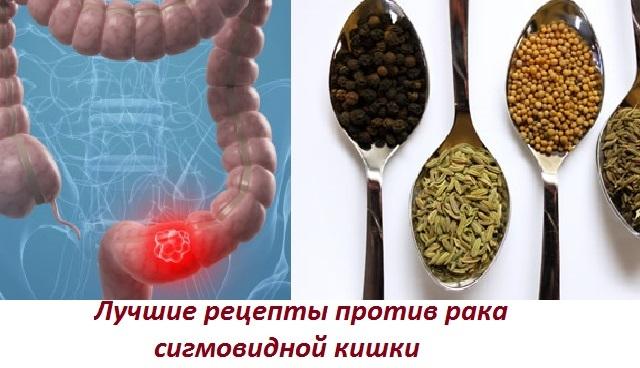 Кишка сигмовидная лечение народными средствами