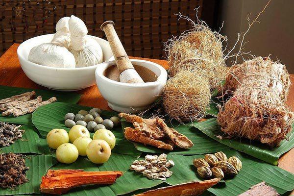 Симптомы и лечение грибкового бронхита
