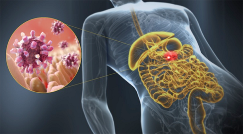 Тяжесть и вздутие в животе: причины и устранение проблемы (препараты, диета)