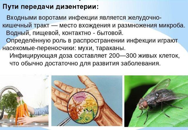 Причина зеленого кала у взрослого со списком заболеваний