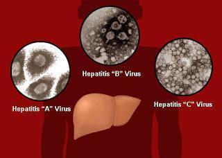 Прививка от гепатита А детям: график, вакцины, побочные эффекты
