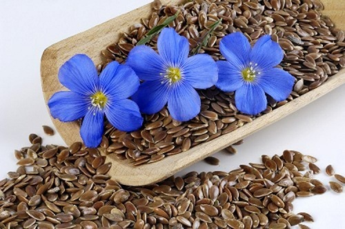 Семена льна для похудения и очищения организма от шлаков: как принимать