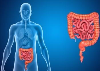 Как лечить дисбактериоз кишечника у взрослых, чем вылечить в домашних условиях