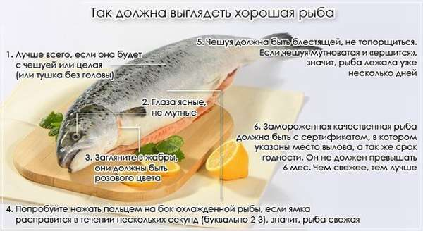 Отравление морепродуктами: симптомы и признаки, лечение