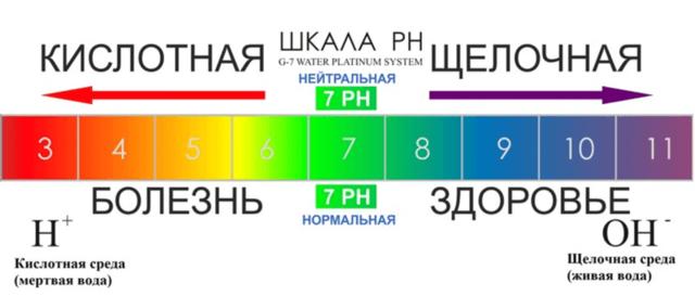 Отчего зависит цвет кала – проявления заболеваний