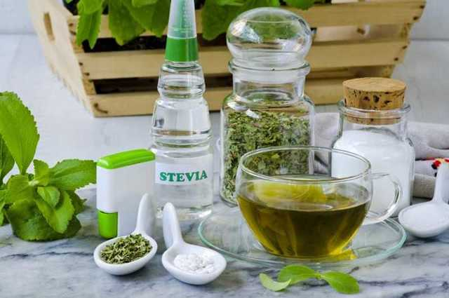 Стевия - применение, рецепты, отзывы, лечебные свойства стевии, противопоказания