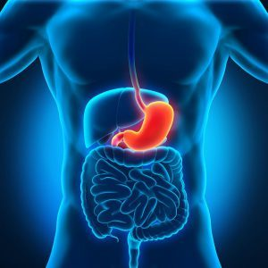 Эрозия желудка - лечение, симптомы, питание