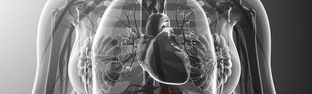 Проблемы с поджелудочной железой симптомы и лечение