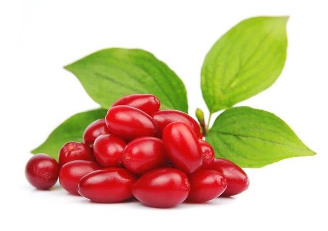 Кизил от геморроя лечение ягодами и косточками