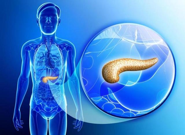Ожирение поджелудочной железы: причины, симптомы и лечение