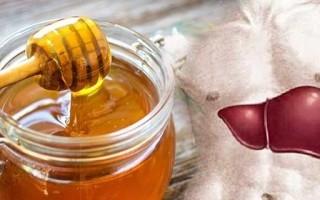Как мед влияет на печень?