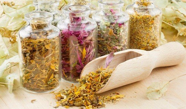 Эффективные народные средства от геморроя у женщин: лекарственные растения итравы, рецепты приготовления лечебных средств в домашних условиях, возможные противопоказания