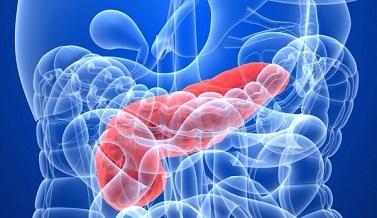 Обострение хронического панкреатита, симптомы и лечение