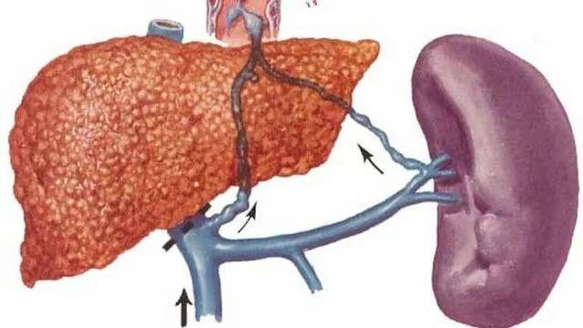 Почему болит живот выше пупка: причины и лечение